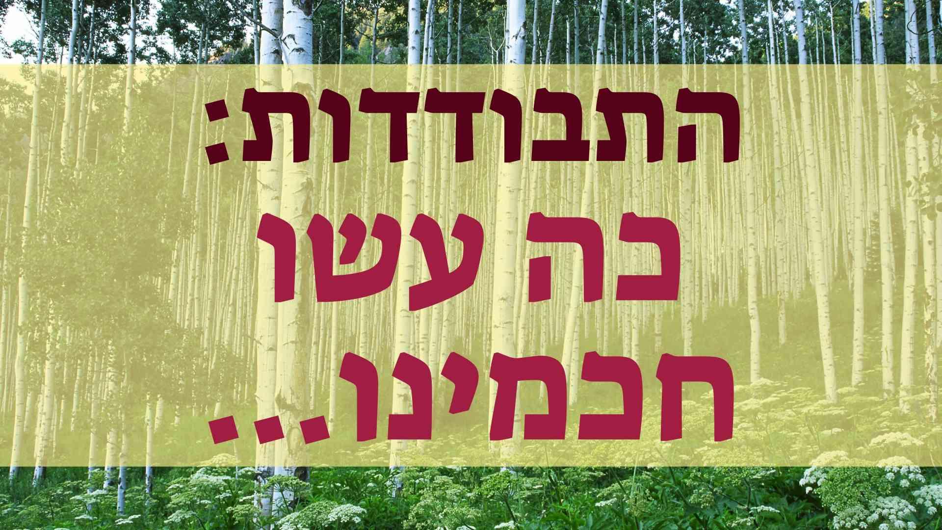 הפגישה: ההתבודדות וגדולי ישראל – כה עשו חכמינו